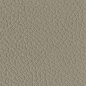 P_29 - grigio gabbiano
