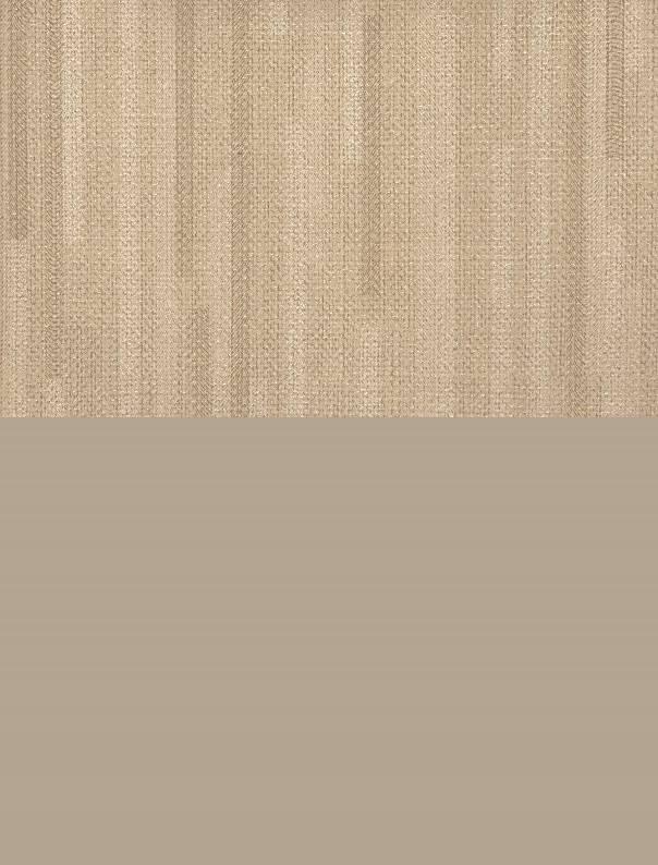 Gres Porcellanato Bamboo 3567- Corsie Corda 0166